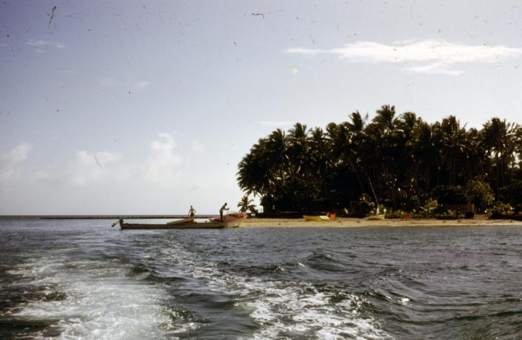 Fiji LicenseSome rights reserved by Brett Jordan